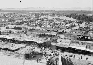 Nabi Rubin Festival